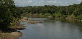"""La zona de amortiguamiento es  el """"escudo"""" de la Reserva Bosawás"""