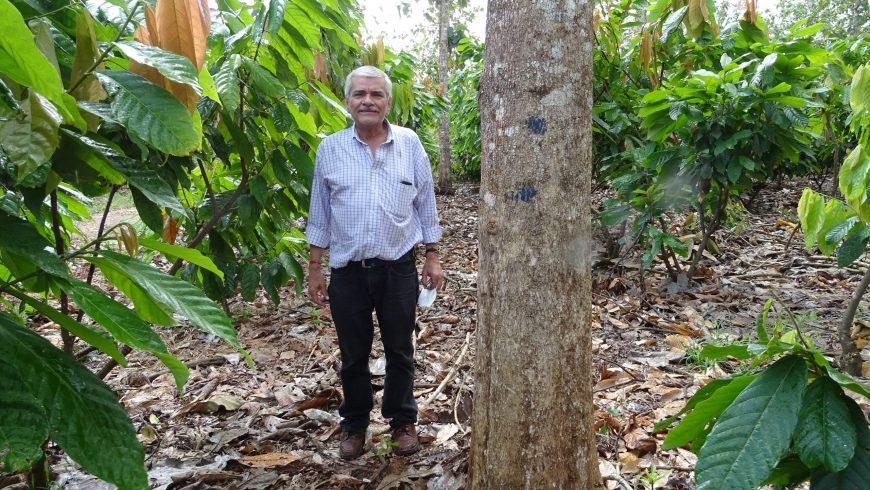 Centro Humboldt visita plantaciones de MLR Forestal