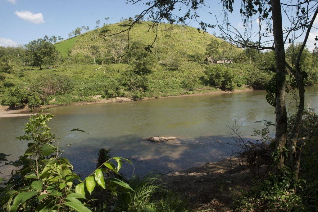 El área de protección de MLR Forestal ubicada a las orillas del Río Prinzapolka.