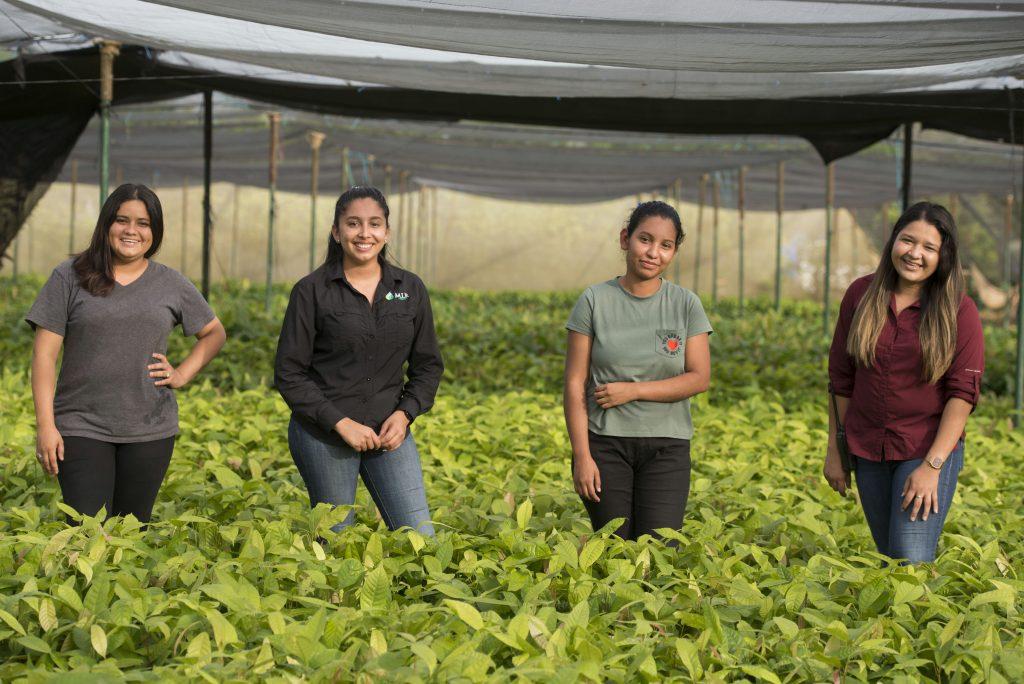 MLR Forestal jóvenes oportunidades laborales